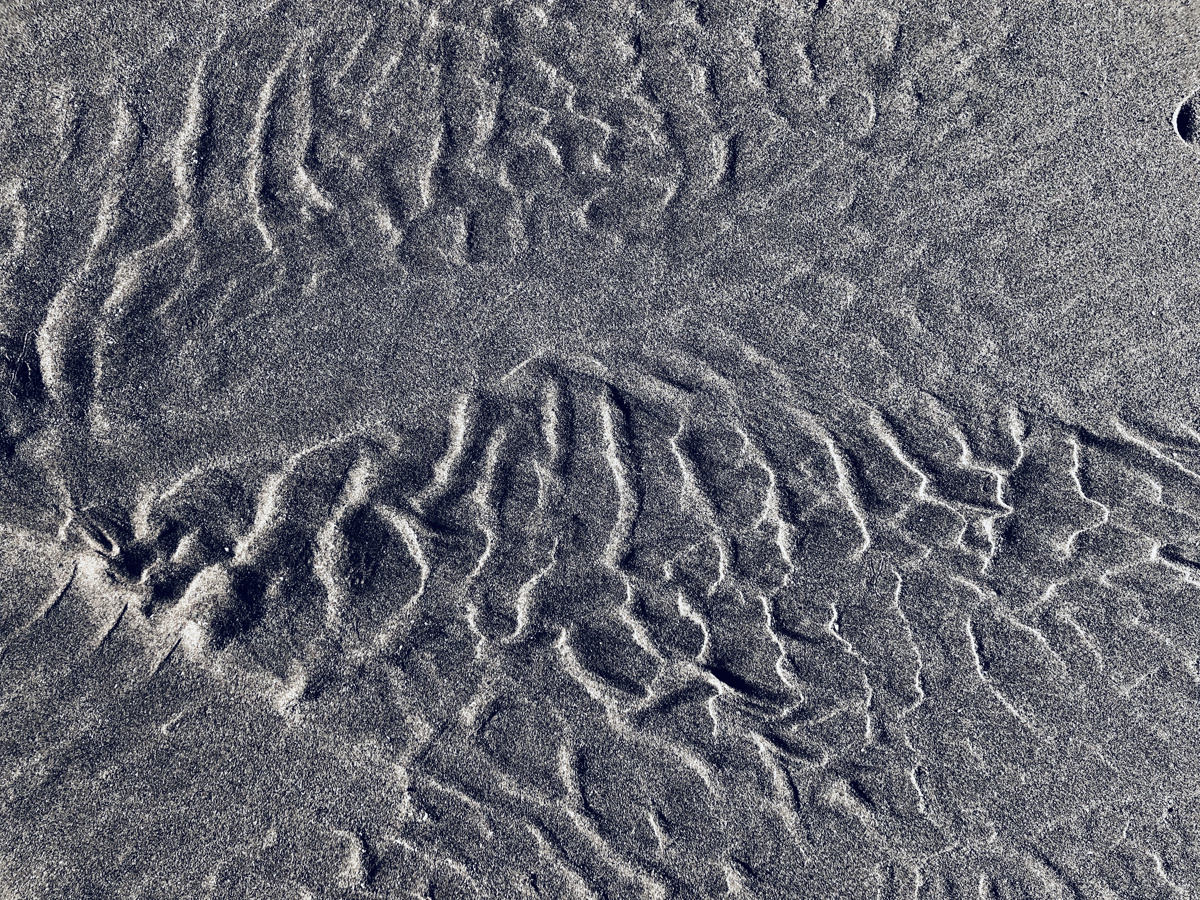 Sands made by tides.
